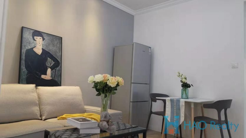 Renovated Apartment in Downtown HAO Realty Shanghai HAOJH037222