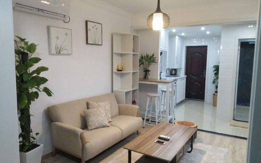 Modern Apartment in Downtown HAO Realty Shanghai HAOTW060128