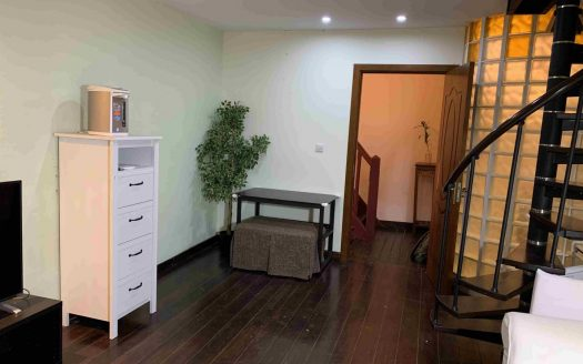 Modern Apartment in Xintiandi Area HAO Realty Shanghai HAOTW060835