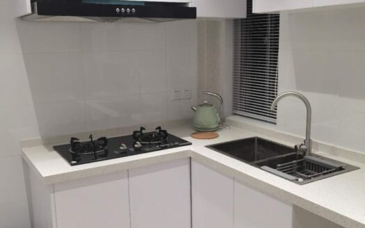 Renovated Apartment in Xujiahui Area HAO Realty Shanghai HAOLC075584