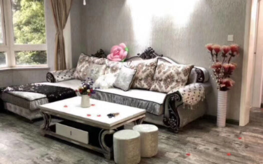 Modern Apartment in Downtown HAO Realty Shanghai HAOLC062706
