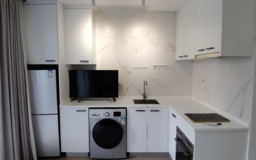Modern Apartment in Former French Concession HAO Realty Shanghai HAOLC077803