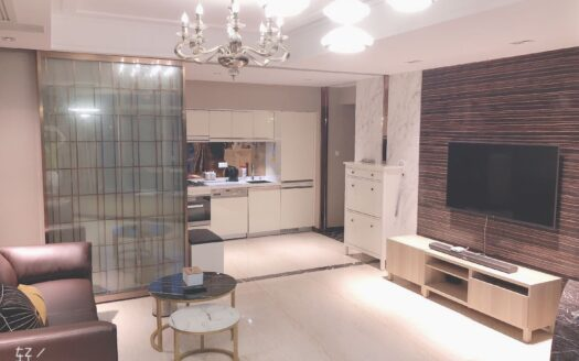 Modern Apartment in West Nanjing Road Area HAO Realty Shanghai HAOLC073975