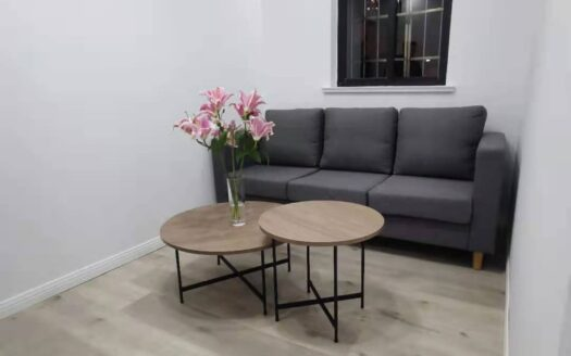 Renovated Apartment in Jing'an Temple Area HAO Realty Shanghai HAOLC090342